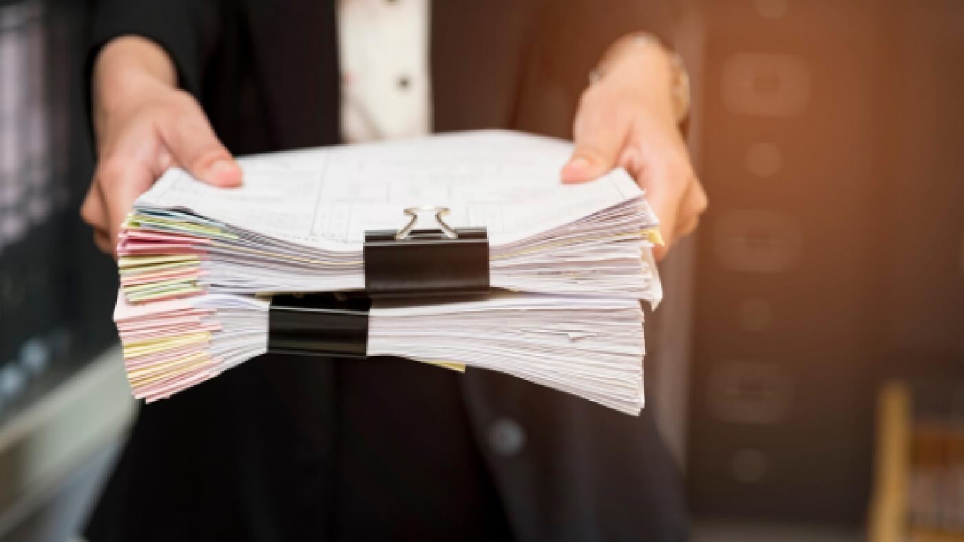 Quins són els processos d'una convocatòria?